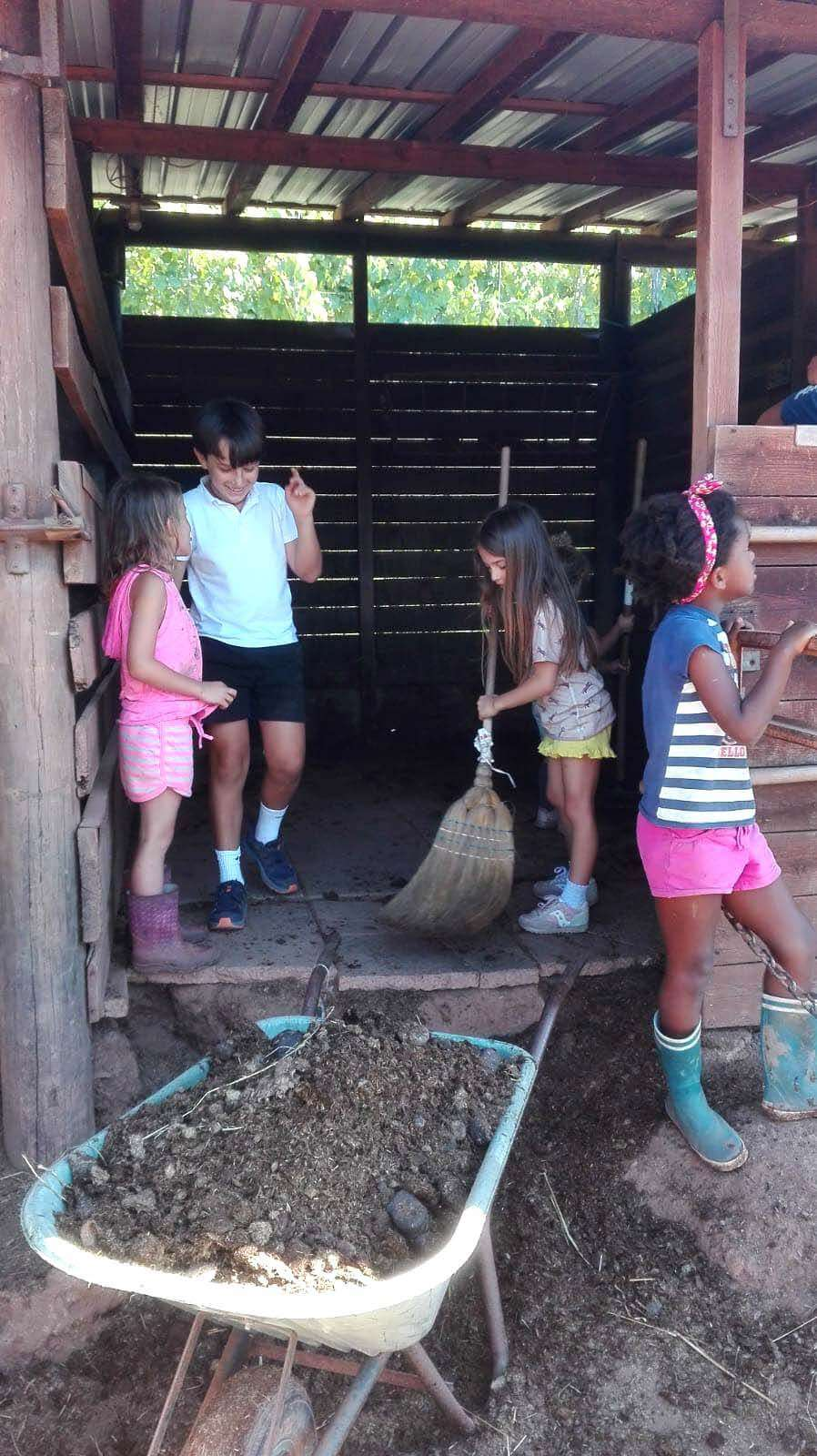 Bambini durante le attività della fattoria didattica NicoBio